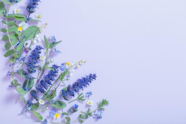 파란색 표면에 아름 다운 여름 꽃
