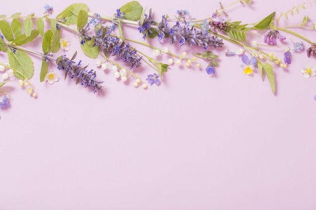 Beautiful summer flowers on pink background