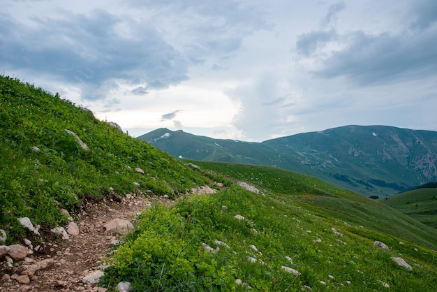 Beautiful summer landscape on a cloudy day in the mountains with a trail