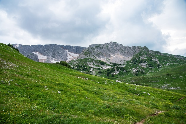 Beautiful summer landscape on a cloudy day in the mountains
