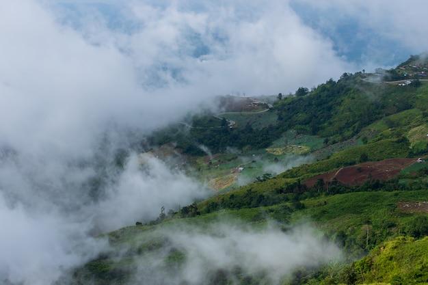 석양과 산의 아름 다운 여름 풍경