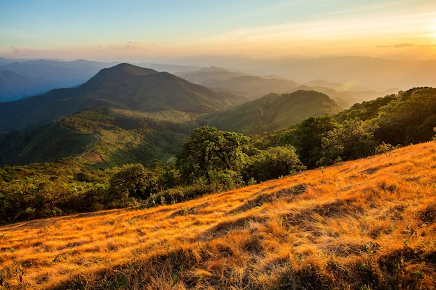 Красивый летний пейзаж в горах с закатом