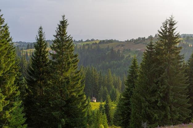 Красивый летний пейзаж села среди карпат.