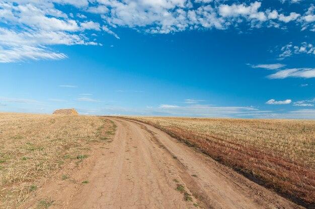 フィールドのわらのスタックの景色と美しい夏の風景