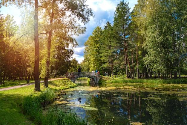 公園の池に架かる古い橋のある美しい夏の風景