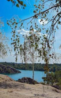 Красивый летний пейзаж с озерными деревьями голубое небо и пушистые облака концепция природы
