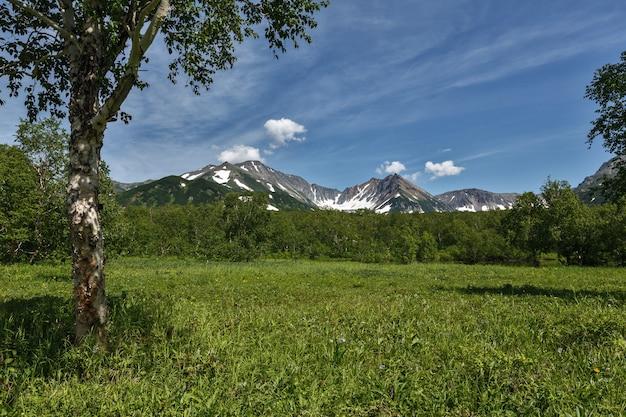 화창한 날 산의 전경을 조망할 수 있는 아름다운 여름 풍경