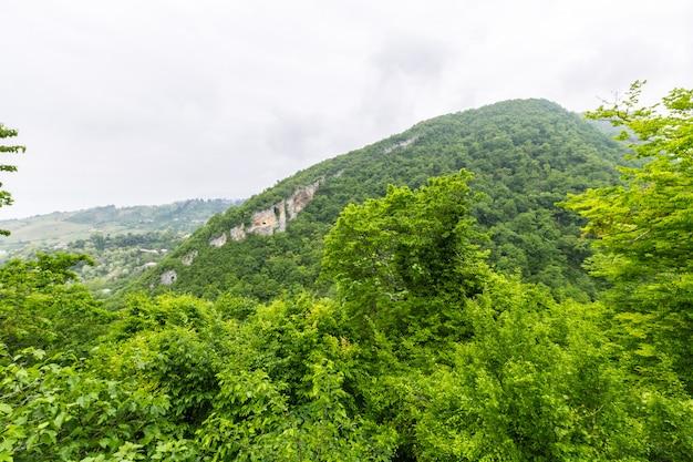 Красивый летний горный пейзаж