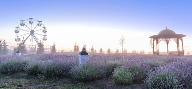 美しい夏のプロット。夜明けの素晴らしいラベンダー畑。装飾的なランプと錬鉄製の望楼が、魔法のような夏の朝の風景を飾ります。