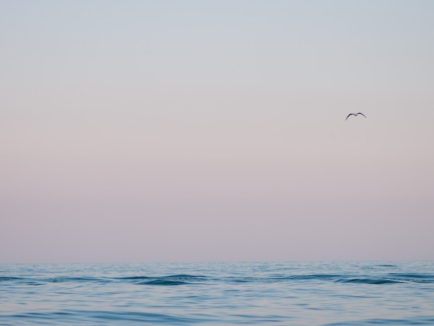 Beautiful summer sea backgroud. waves in sunshine.