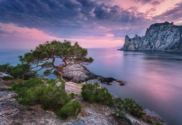 Beautiful summer sunset at the sea with mountains, stones and trees
