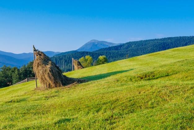 美しい晴れた日は山です