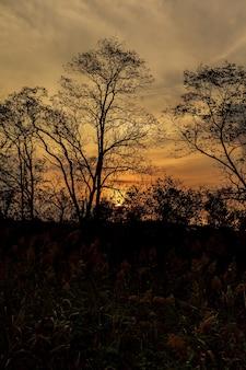 Красивый восход солнца и драматические облака на небе.
