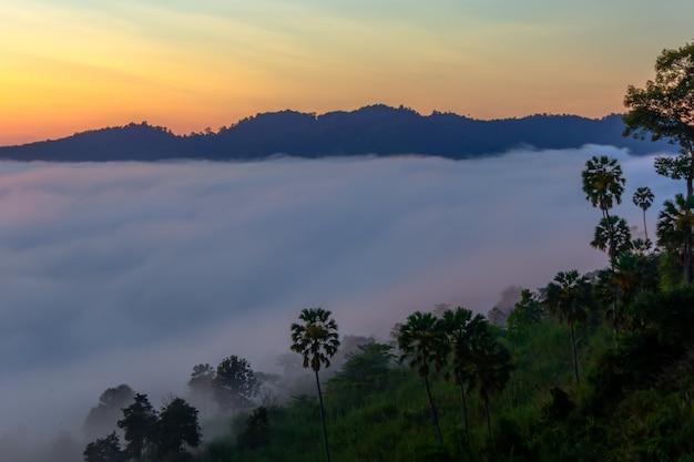 タイ、ペッチャブーン県カオコーの美しい日の出と霧。