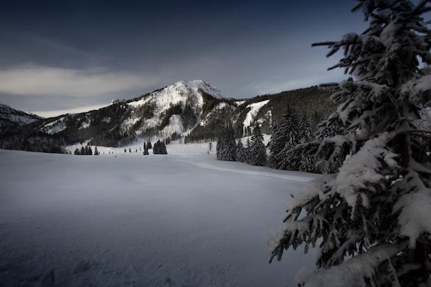 雪に覆われた山の美しい日の出