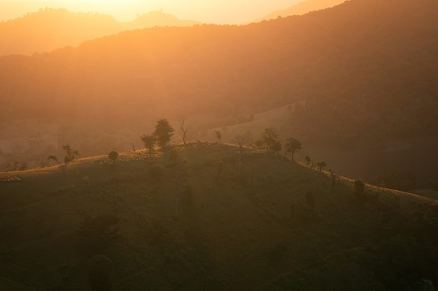 시골에서 농업 언덕에 아름다운 일출