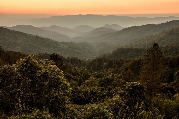 Beautiful sunrise sky over tropical forest and mountain