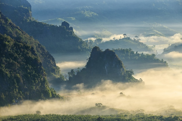 Beautiful sunrise of travel place with morning mist at phu langka national park in phayao province