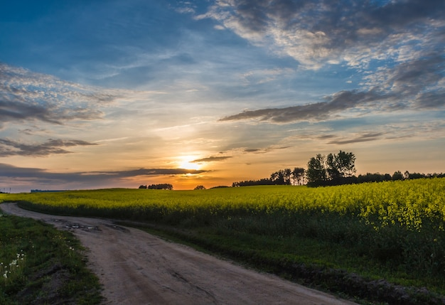 Beautiful sunset on a country  road with blue sky and clouds