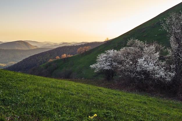 山の美しい夕日