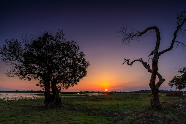 Beautiful sunset on the marsh in countryside of thailand
