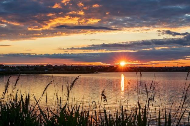 フォアグラウンドに葦、光線と夕日と湖の美しい夕日