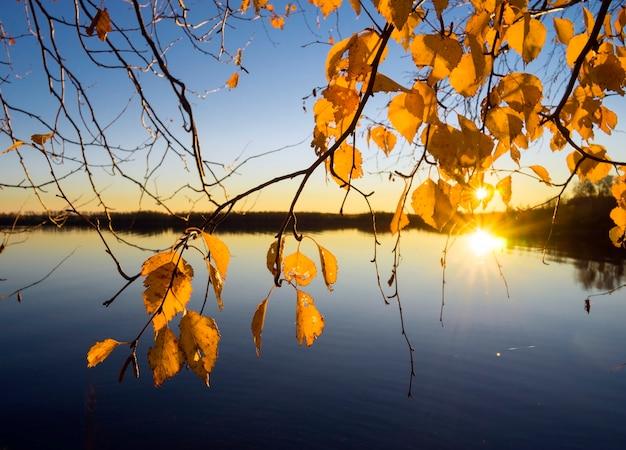 西シベリアのオビ川の美しい夕日。