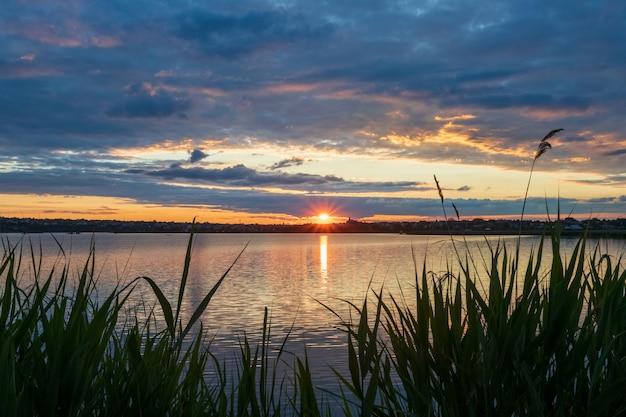 フォアグラウンドの葦、光線と反射のアスタリスクの形の夕日と川の美しい夕日