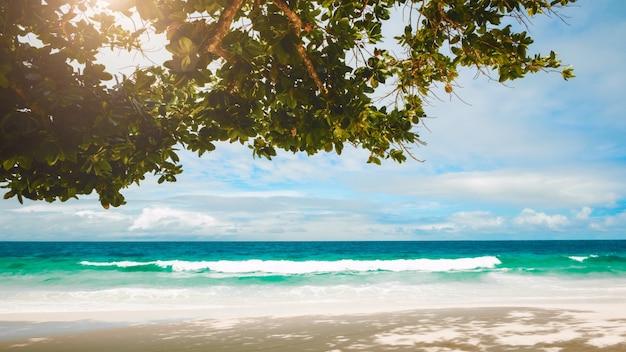 熱帯のビーチの美しい夕日