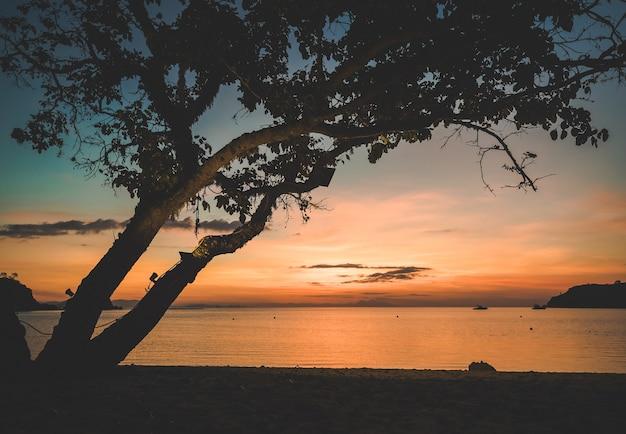 シルエットツリー旅行休暇休日背景バリ島の景色を望む海に沈む美しい夕日