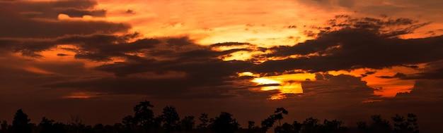 아름다운 일몰 하늘. cloudscape. 실루엣 나무 위에 황금 일몰입니다. 어두운 구름의 파노라마보기입니다.
