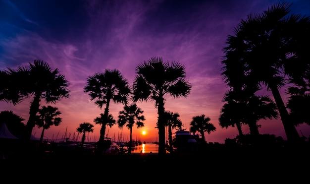 マリーナベイの美しい夕焼け空。ヨットと港の眺め