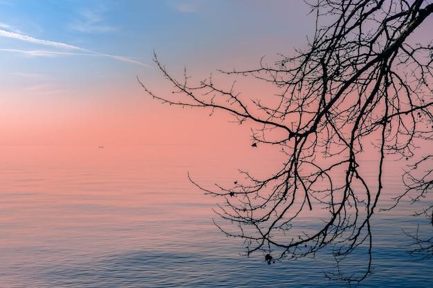 Красивый закат на озеро гарда туманным вечером через ветку дерева. вдалеке виднеется силуэт лодки с рыбаками.