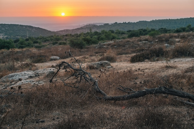 Красивый вид на закат на горизонте над холмистыми полями
