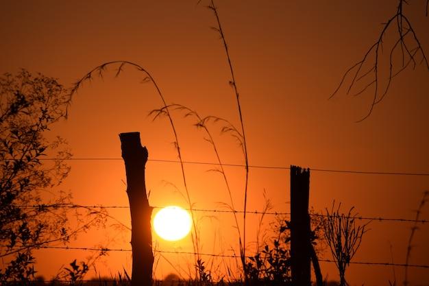 Красивый закат с забором силуэт