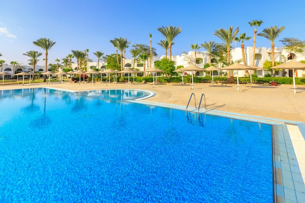 이집트의 아름다운 수영장과 야자수