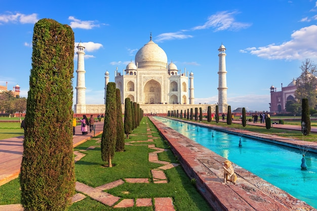 Красивый мавзолей тадж-махал в агра, индия