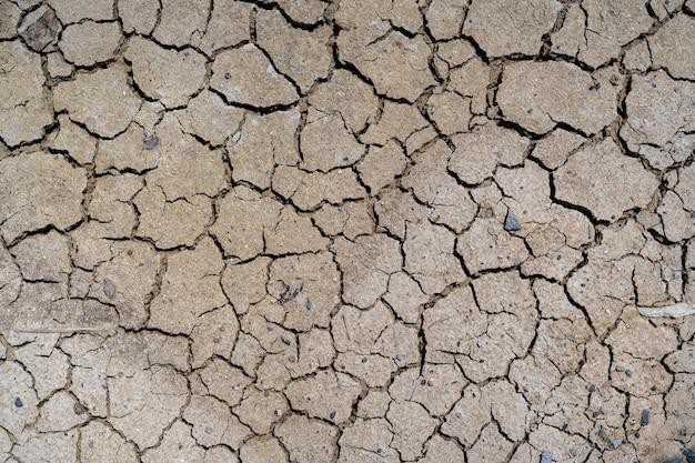 Beautiful texture of cracked dry ground in the countryside background.
