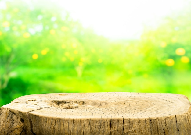 Beautiful texture of old tree stump table top on blur fruit garden farm background.for create product display or design key visual layout.