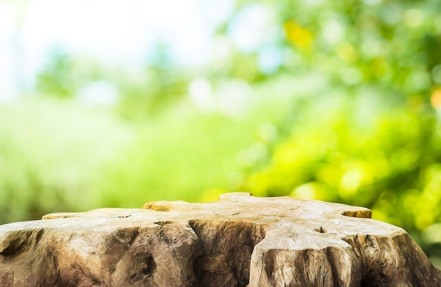 Beautiful texture of old tree stump table top on blur green garden farm background.for create product display or design key visual layout.