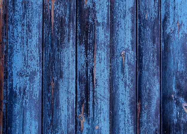 Beautiful texture of an old tree. vertically positioned blue boards. wooden background for designers. old wood floor