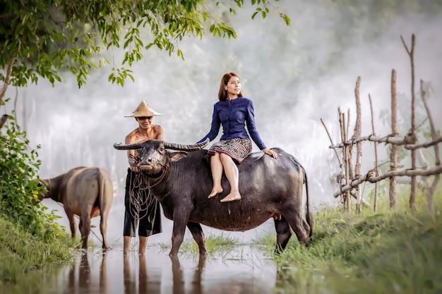 A beautiful thai woman is sitting on a buffalo's back.