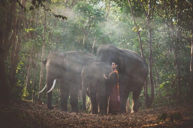 Beautiful thai woman spending time with the elephant in the jungle