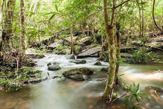深い森の美しいタイの滝。