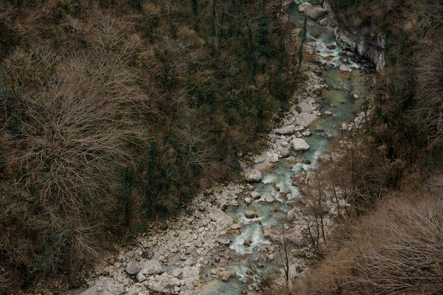 Beautiful top view of azure forest river flowing among rocks in martvili canyon