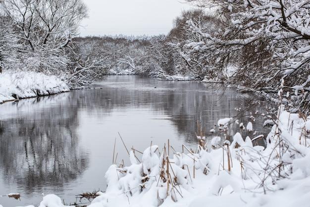 Красивый тихий зимний пейзаж