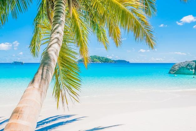 Bel cielo corsa spiaggia di sabbia