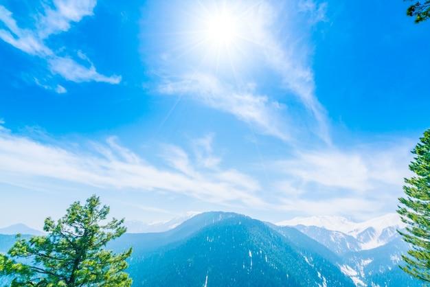美しい木と雪の山々の景色カシミール州、インド