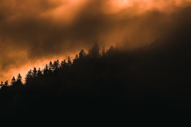 フランスの霧の夕暮れに捕らえられた美しい木々に覆われた丘