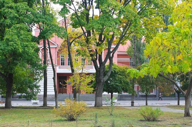 도시 공원의 아름다운 나무들